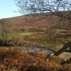 Wheeldale Moor